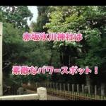 赤坂氷川神社は縁結びのご利益があるパワースポット!