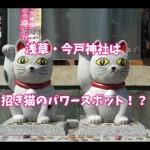 今戸神社~ご利益は縁結び!招き猫発祥地の記録とは?