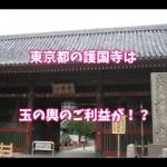 東京・護国寺はご利益のあるパワースポット!