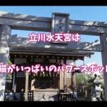 猫が可愛い♡立川水天宮はパワースポット!?