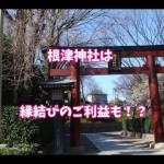 根津神社はパワースポット~ご利益は縁結びと恋愛運?