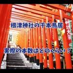 東京・根津神社はパワースポット~鳥居の数は千本なの?
