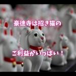 豪徳寺の招き猫のご利益は縁結びや恋愛運に影響がある?