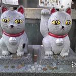 今戸神社の恋みくじの効果について