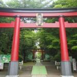 恋愛祈願をする神社で東京にあるおすすめスポット3選