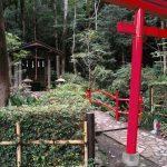 東京のパワースポットで穴場の神社をご紹介